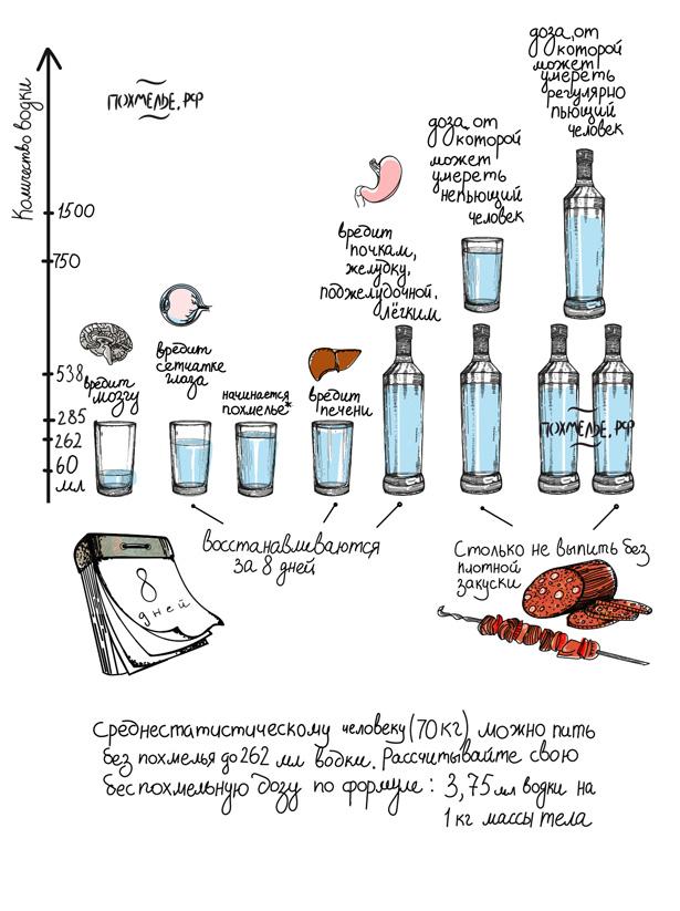 Инфографика. Сколько алкоголя чему вредно. Когда начинается похмелье