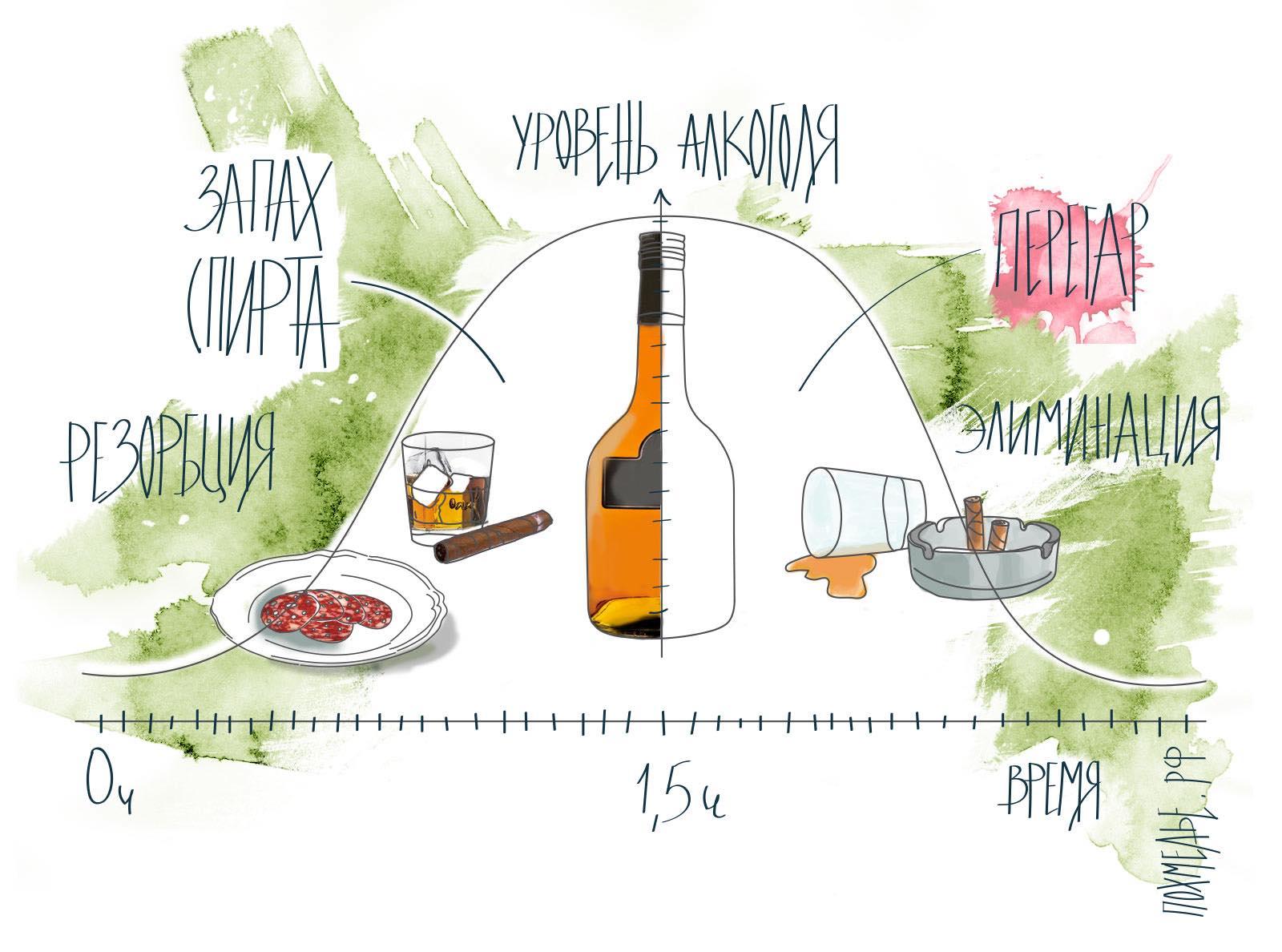 Как быстро отрезветь от алкоголя?