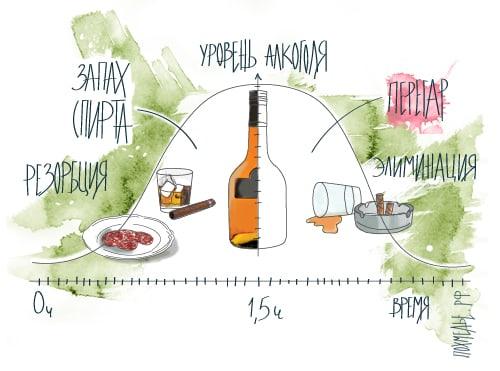 Как определить есть ли перегар самому