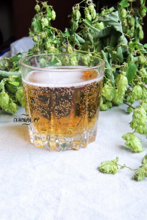 В составе пива есть полезные вещества, однако злоупотреблять не стоит